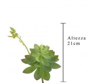 Echeveria cactus 21 cm green verde